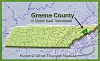 Greene County in Upper East Tennessee